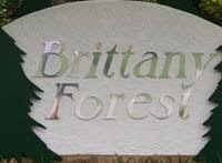 Brittany Forest Subdivision
