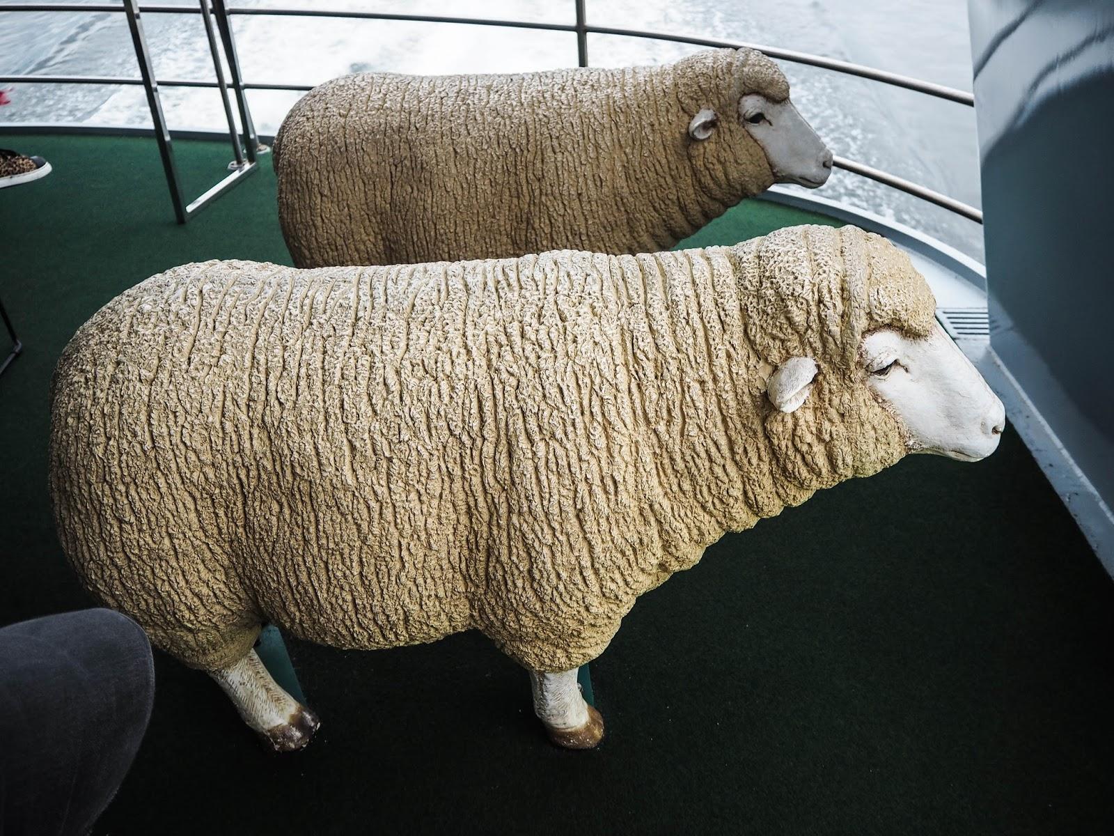 Sheep seats on the boat to MONA gallery, Tasmania