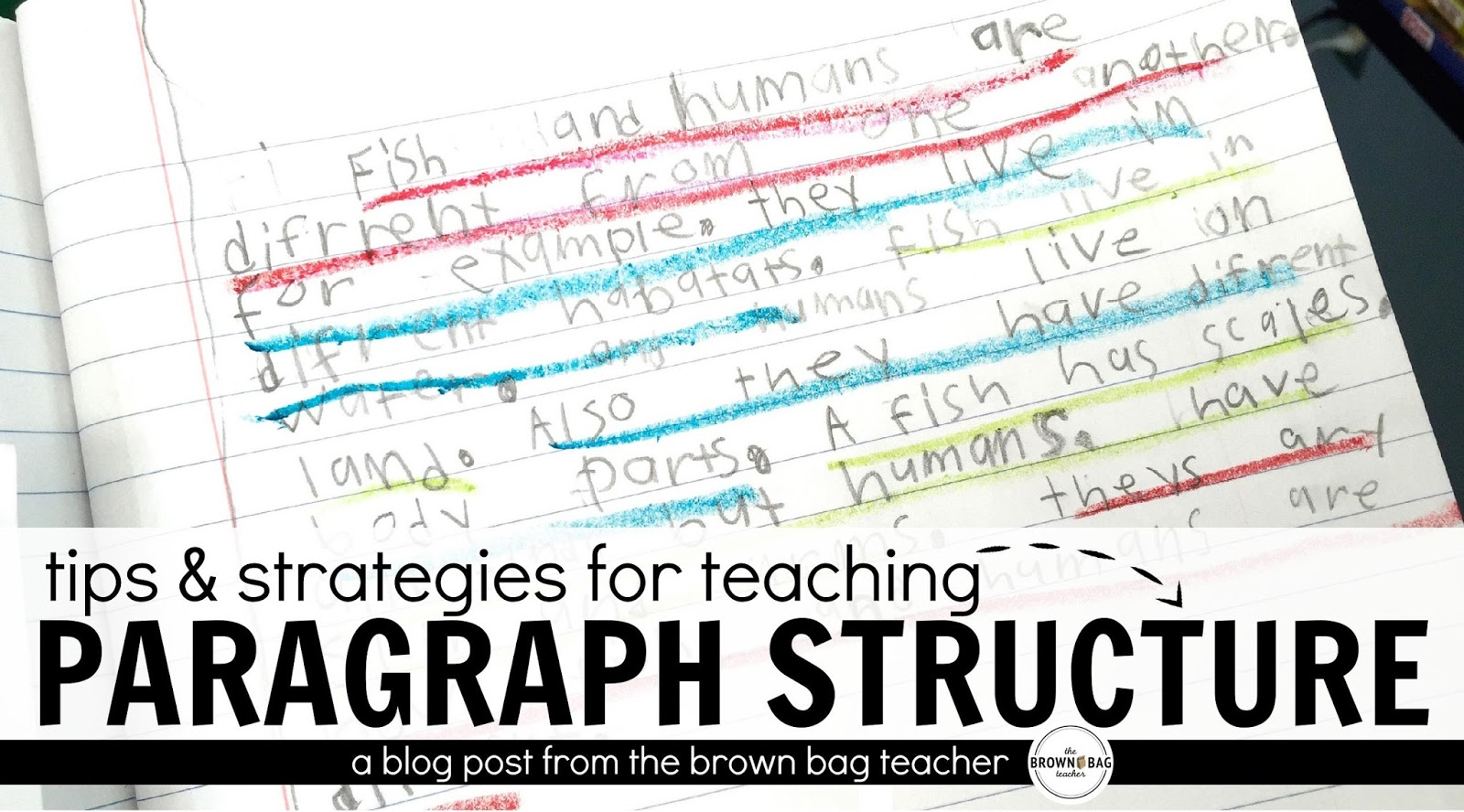 Paragraph Writing In 1st Grade