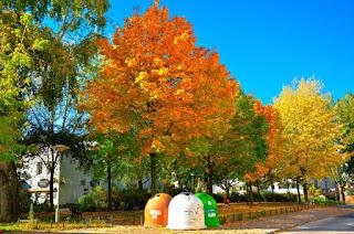 Oktober 2015 - Auch am Mühlengrund wird es nun mit aller Macht Herbst