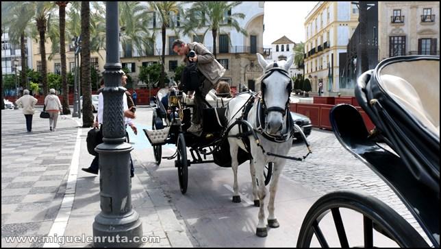 Calesa-Jerez-Coche-Caballos_3