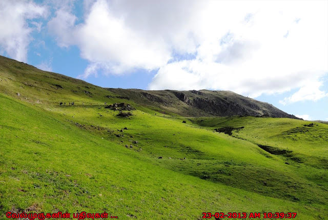 Hiking Up At Mission Peak
