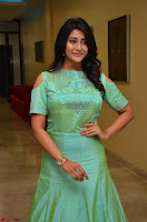 Pooja Jhaveri in Beautiful Green Dress at Kalamandir Foundation 7th anniversary Celebrations ~  Actress Galleries 045.JPG