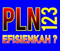 PLN 123 Efisienkah ?