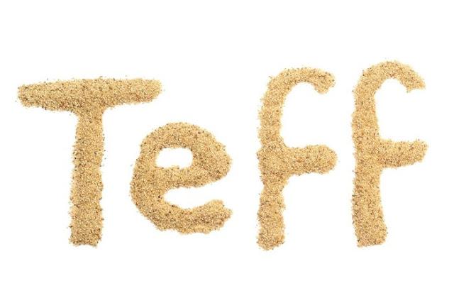 teff tohumu faydaları