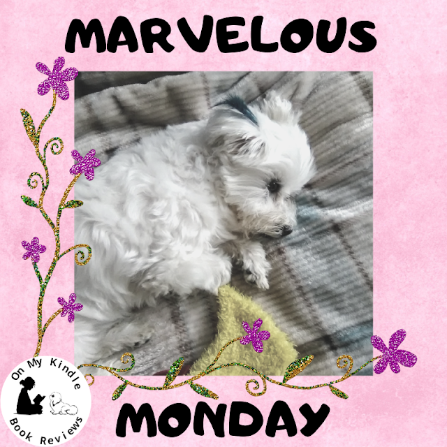 Marvelous Monday with Lexi at On My Kindle BR, April 29th