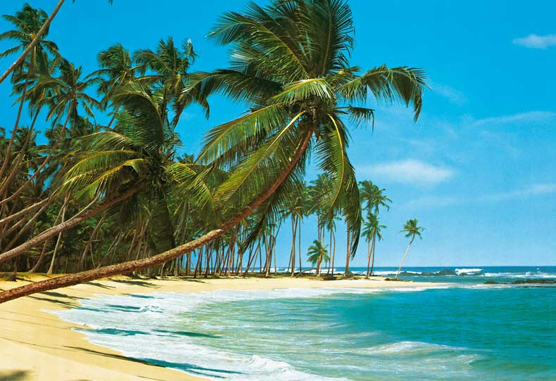 COOL IMAGES: Tropical Beach Wallpaper