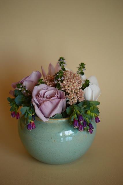rose sterling silver, cerinthe, monday vase meme, small sunny garden, desert garden, amy myers, ozothamnus