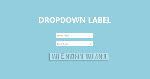 Changing the Widget Label Function to Dropdown