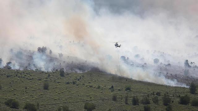 Kebakaran Hutan, 2.199 Warga Dumai Riau Kena Infeksi Pernapasan Akibat Kabut Asap
