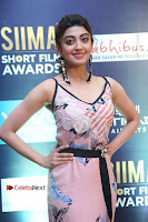 Actress Pranitha Subhash Pos in Short Dress at SIIMA Short Film Awards 2017 .COM 0002.JPG