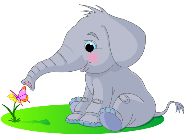Butterfly and Elephant