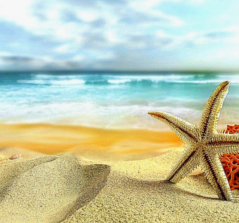 Starfish And Beach Sand Facebook Cover
