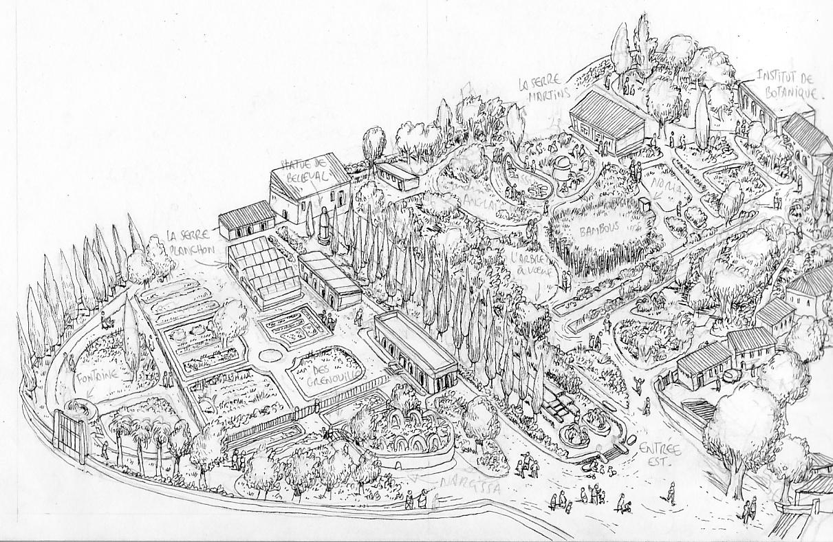 Le petit guide de Montpellier: Le jardin des plantes
