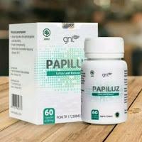 PAPILUZ Obat Pelangsing Badan / Penghilang Lemak Yang Berlebihan