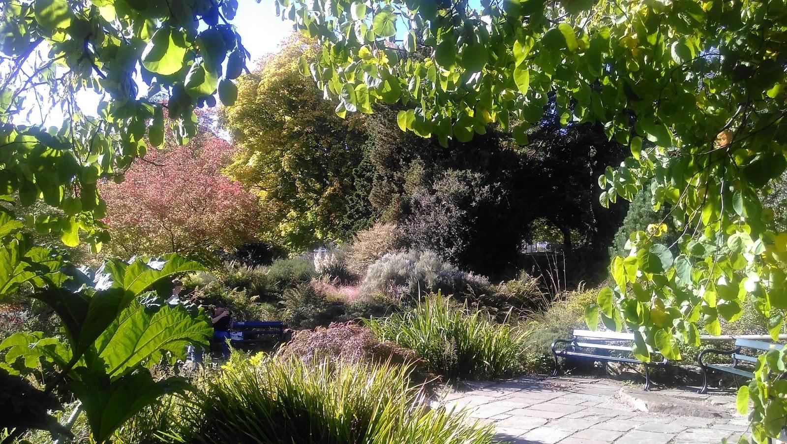 essay about gardening gardening karma compass val bourne the  gwenfar s garden and other musings photo essay sheffield photo essay sheffield botanical gardens in autumn