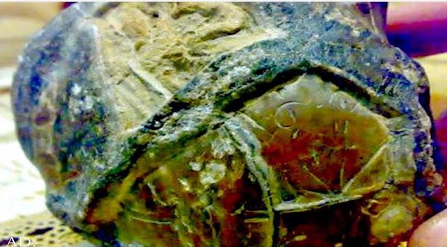 Batu Alien di Kupang
