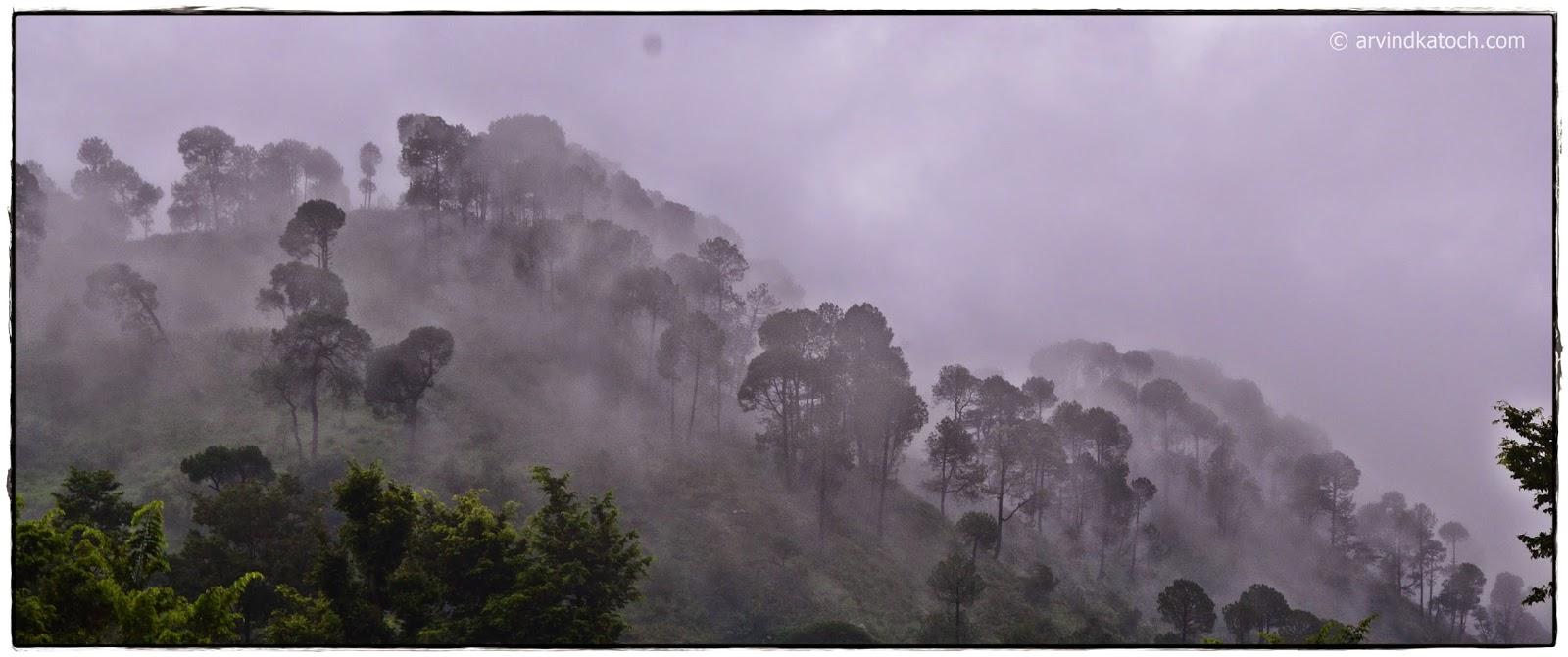 Fog, Hill, Himachal Pradesh, baijnath,
