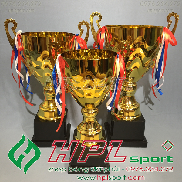 Cúp bóng đá HPL - 1320