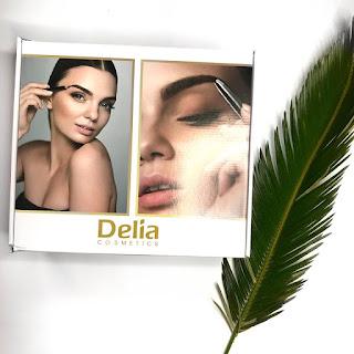 Delia Cosmetics - produkty do brwi