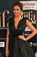 Esha Gupta in a Deep Neck Sleeveless Dark Green Gown at IIFA Utsavam Awards 2017     15.JPG