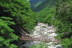 The Vine Bridges Of Iya Valley, Japan