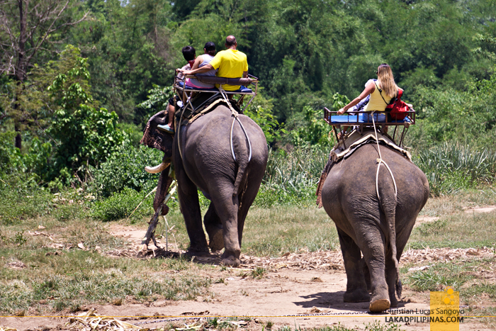 Death Railway Tour Kanchanaburi Elephant Trek