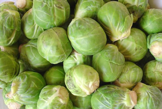Brüksel lahanası resmi
