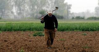Αγροτικό τμήμα του ΣΥΡΙΖΑ Πιερίας - Σχετικά με την συνεχιζόμενη παραπληροφόρηση για το θέμα των συνταξιούχων, που έχουν παράλληλα αγροτικό εισόδημα
