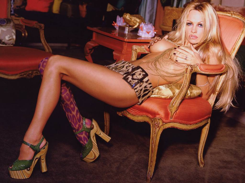 Pamela Anderson Hot Pictures, Photo Gallery  Wallpapers -2793