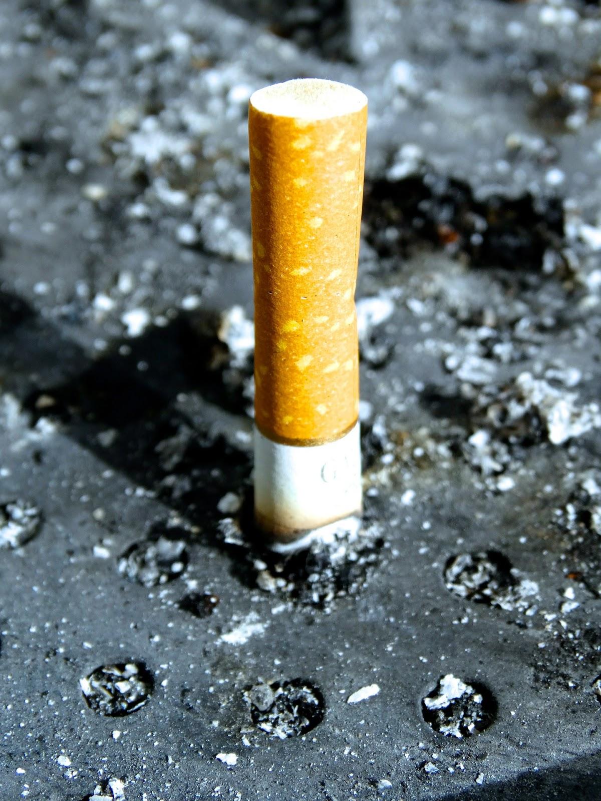 Lire gratuitement alen des châtiments cesser de fumer