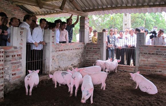 Tuyên truyền, vận động chủ trang trại, người chăn nuôi