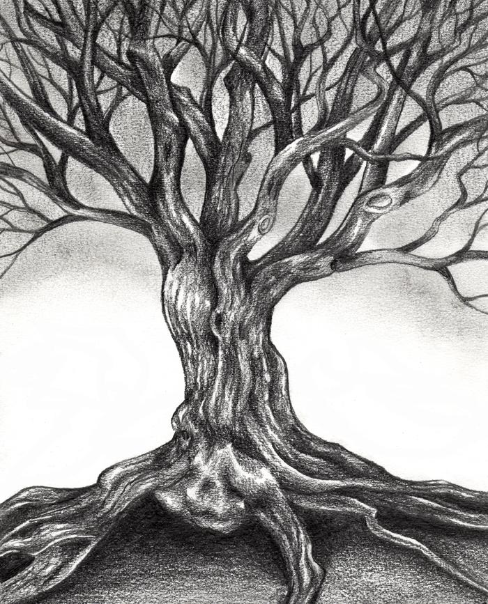 Creepy Drawings Tree Easy