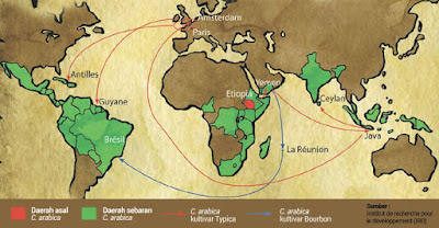 The History of Coffee Cultivation