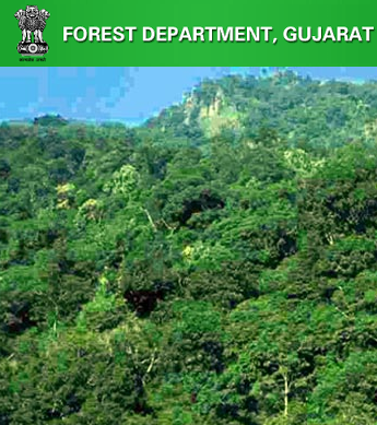 Gujarat Forests and Environment Department Recruitment 2017 Notification