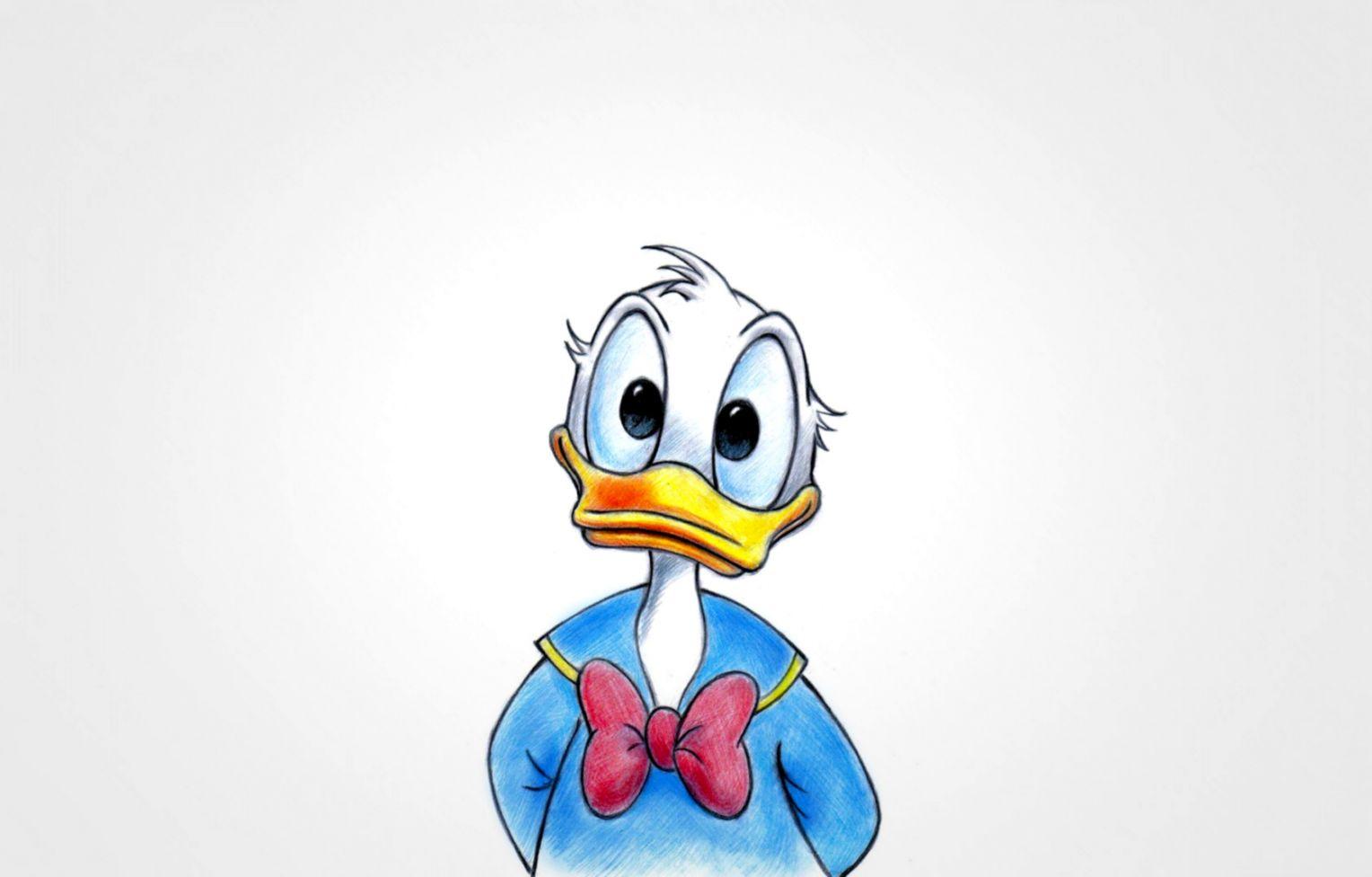 artwork Donald Duck Walt Disney Animals Wallpapers HD Desktop