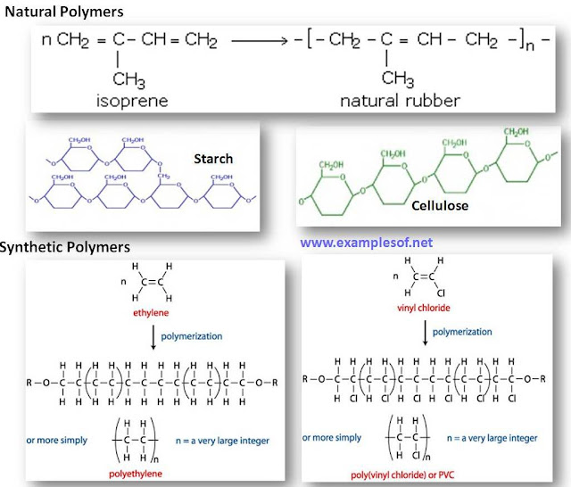 Example of Monomer and Polymer