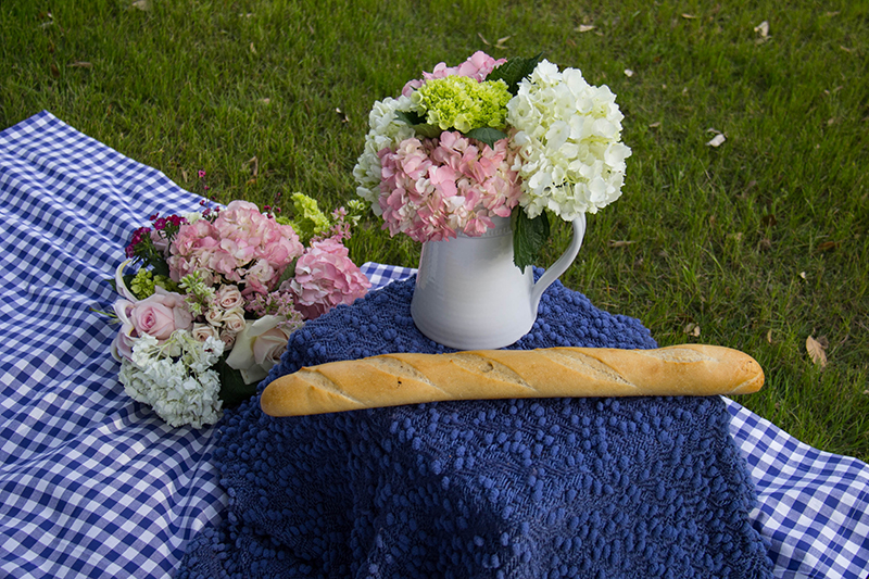 how to plan a picnic date