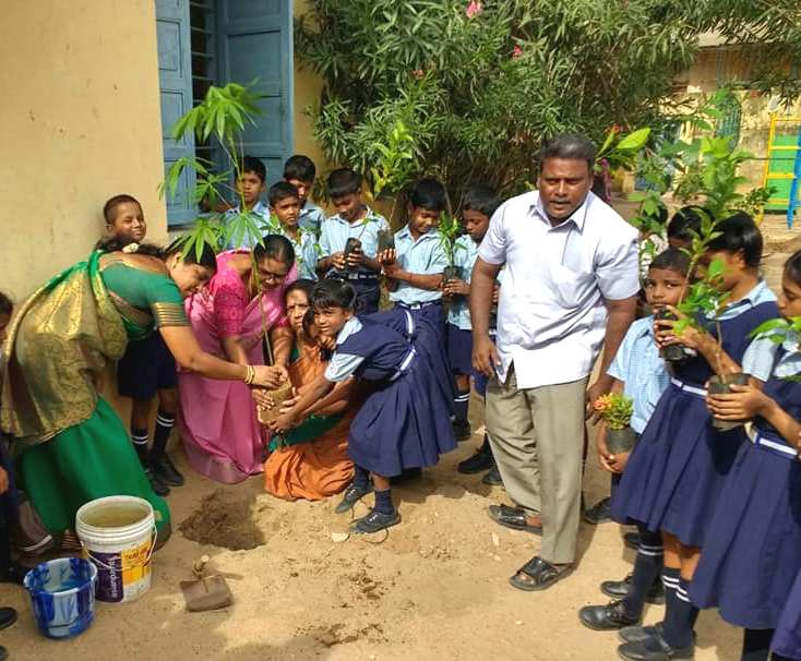 Image result for mullaivanam tree bank