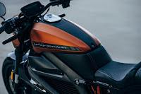 Harley-Davidson LiveWire (2019) Rear Side Detail