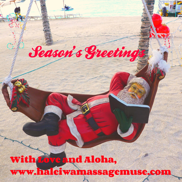 Santa relaxes on a hammock near Haleiwa