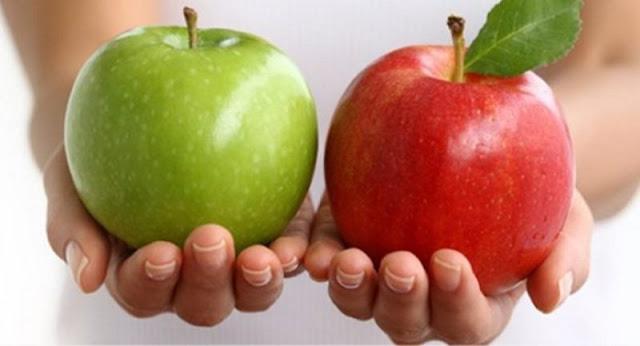 محصول التفاح ..بين ارتفاع تكاليف الإنتاج وصعوبات التسويق داخلياً وخارجياً