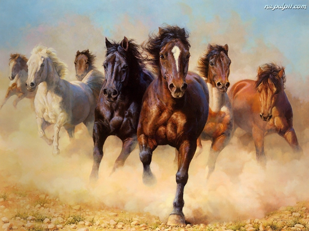 Dreamland Traveller: Konie w galopie