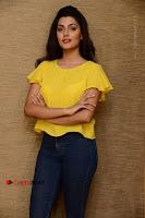 Actress Anisha Ambrose Latest Stills in Denim Jeans at Fashion Designer SO Ladies Tailor Press Meet .COM 0031.jpg