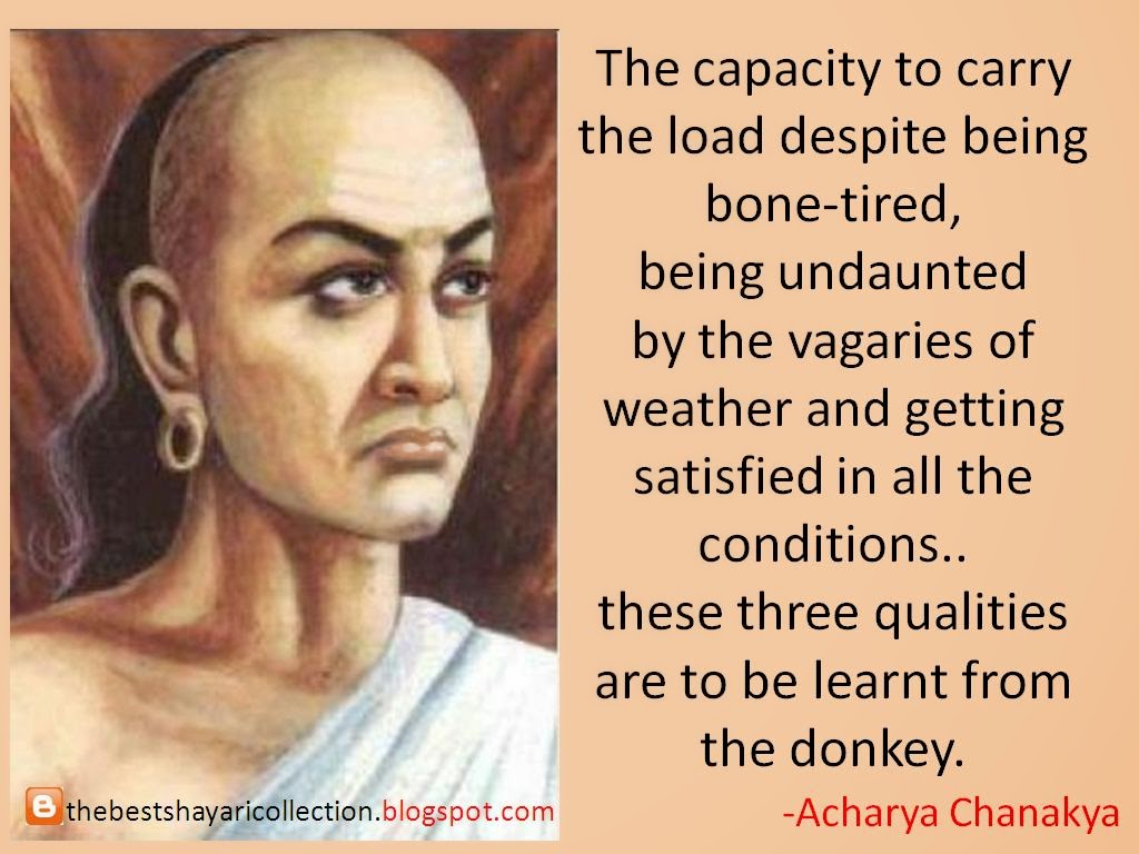 chanakya quotes neet - Learning from the donkey HD photo wallpaper