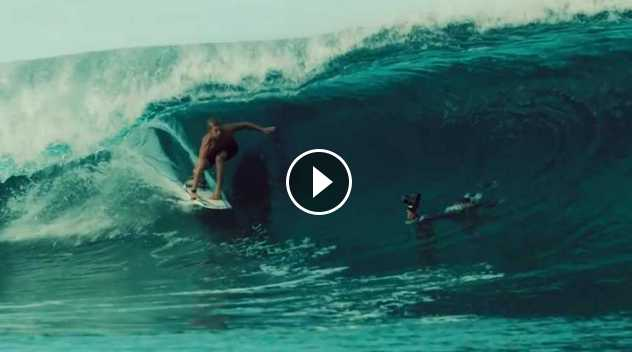 KOLOHE ANDINO IS DESIGNED FOR SHOWING HEART
