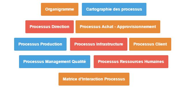 Exemples: Cartographie et identification de tous les processus d'une entreprise réelle