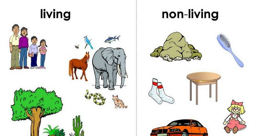 What science deals with living things