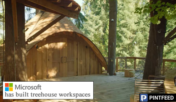 Microsoft builds epic tree house office space for employees