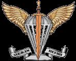 Ukrainian Airborne Forces - Десантно-штурмові війська